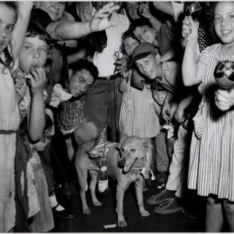 """Victory Pup - Merry Makers on Second Avenue near 5th Street, on New York ́s  Lower East Side, Decorated this Pup in the Spirit of the Occasion, as News of the End of the War with Japan was Announced."""